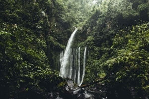 The BEST Waterfalls in Bali!