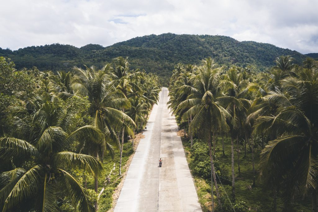 Riding a scooter on a palm tree lined road