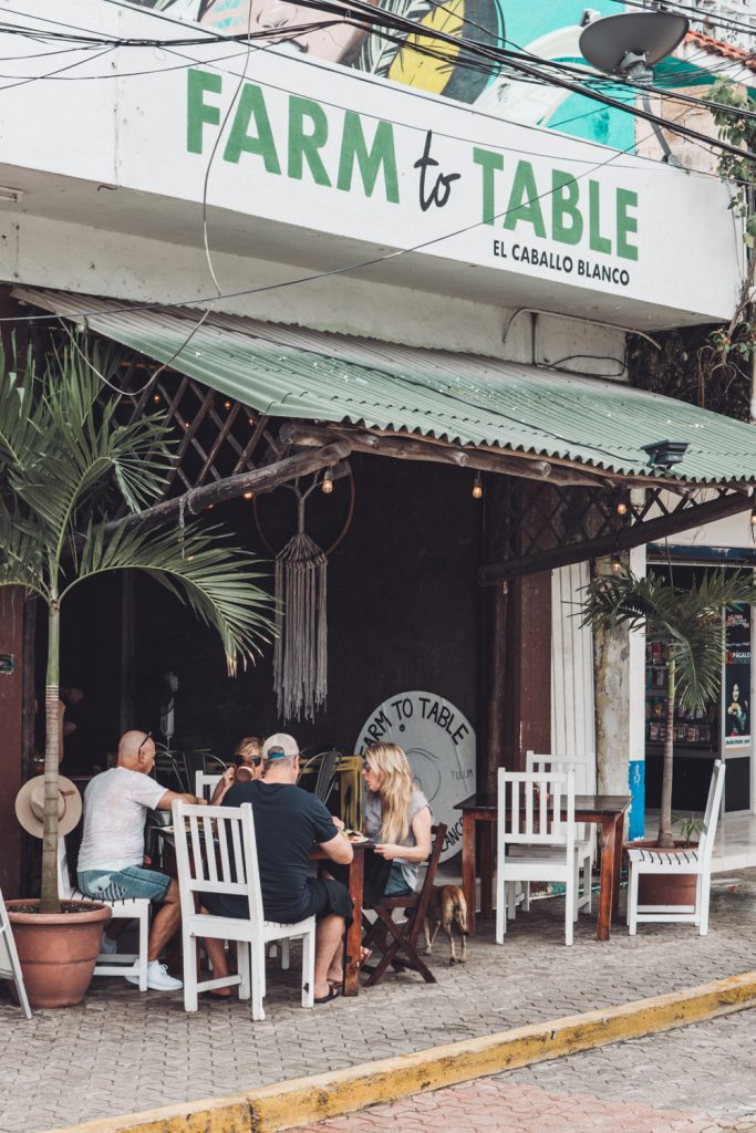 Farm to table restaurant Tulum Mexico