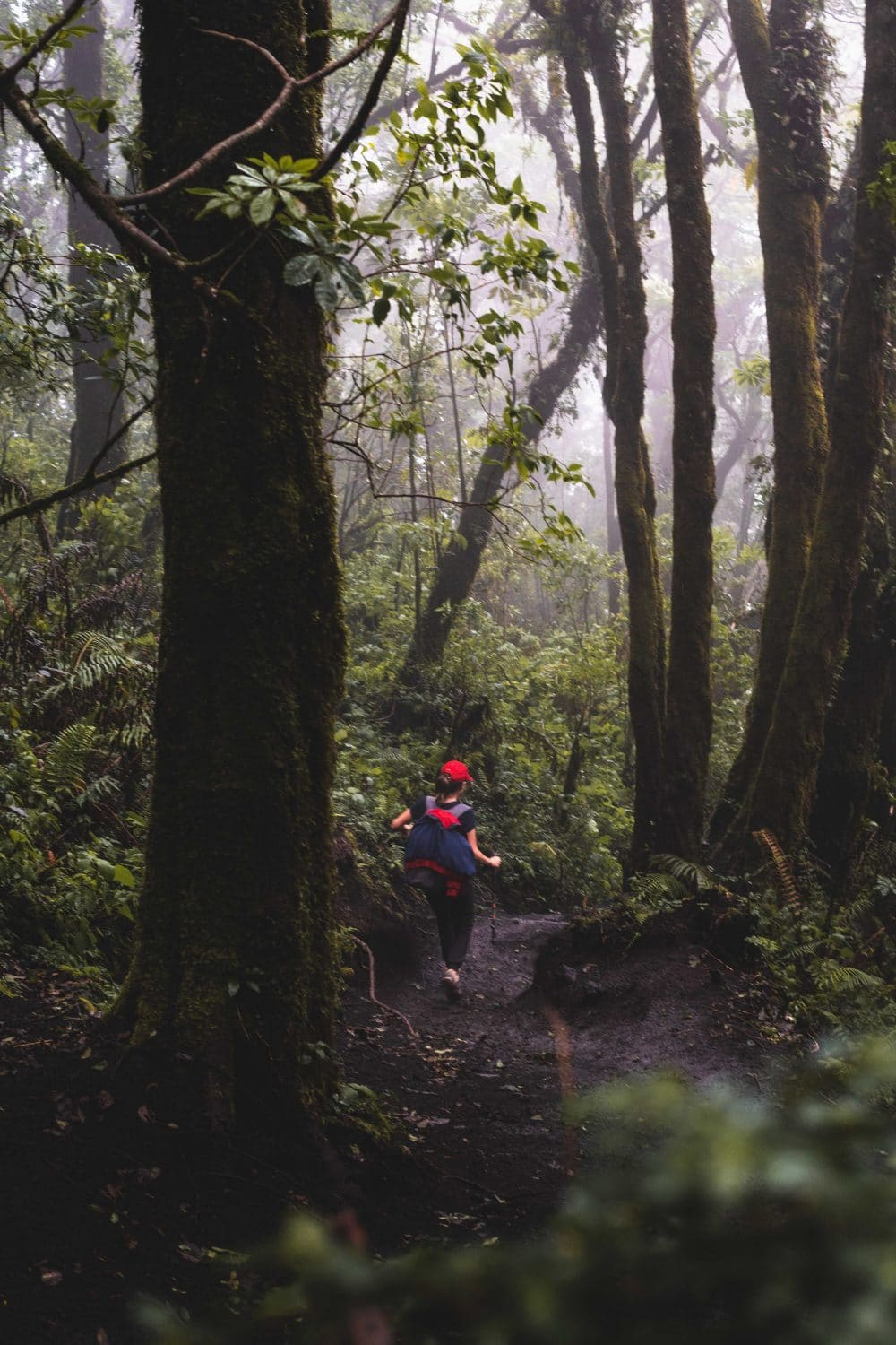 hiking down acatenango volcano