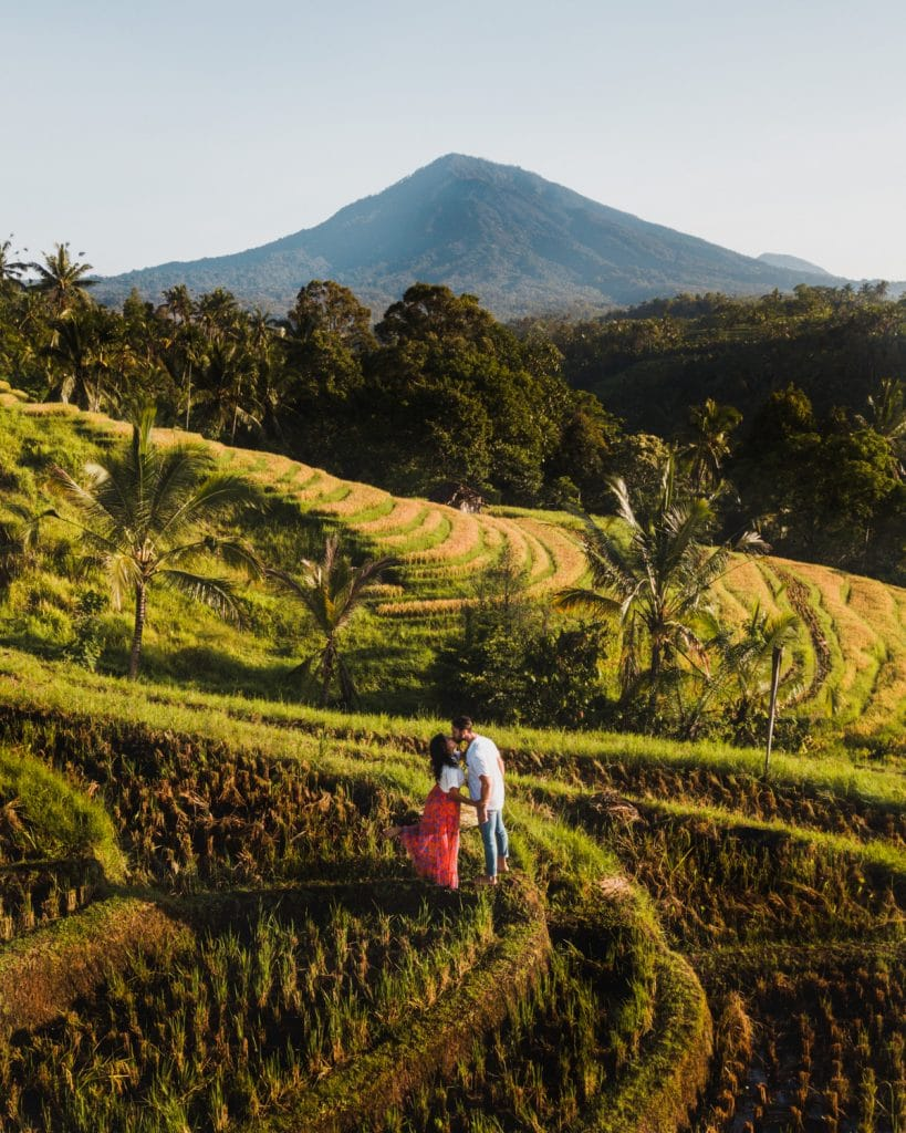 couple portrait in bali belimbing rice terraces
